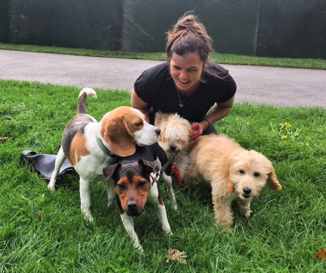 Woman sits on grass with four dogs